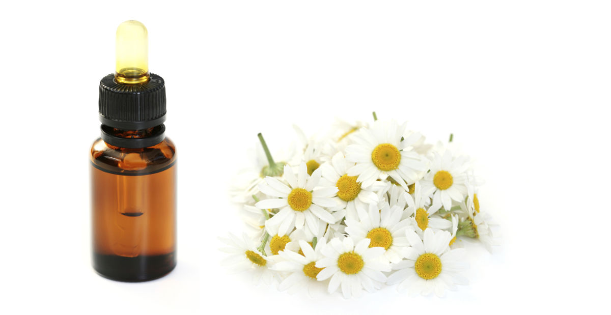 2014-11-27-chamomile-essential-oil-kills-breast-cancer-cells-fb