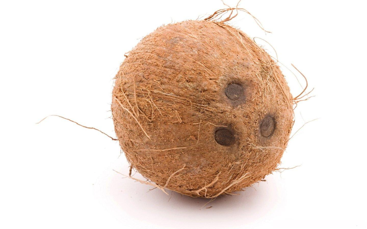 3-coconut-with-three-eyes1