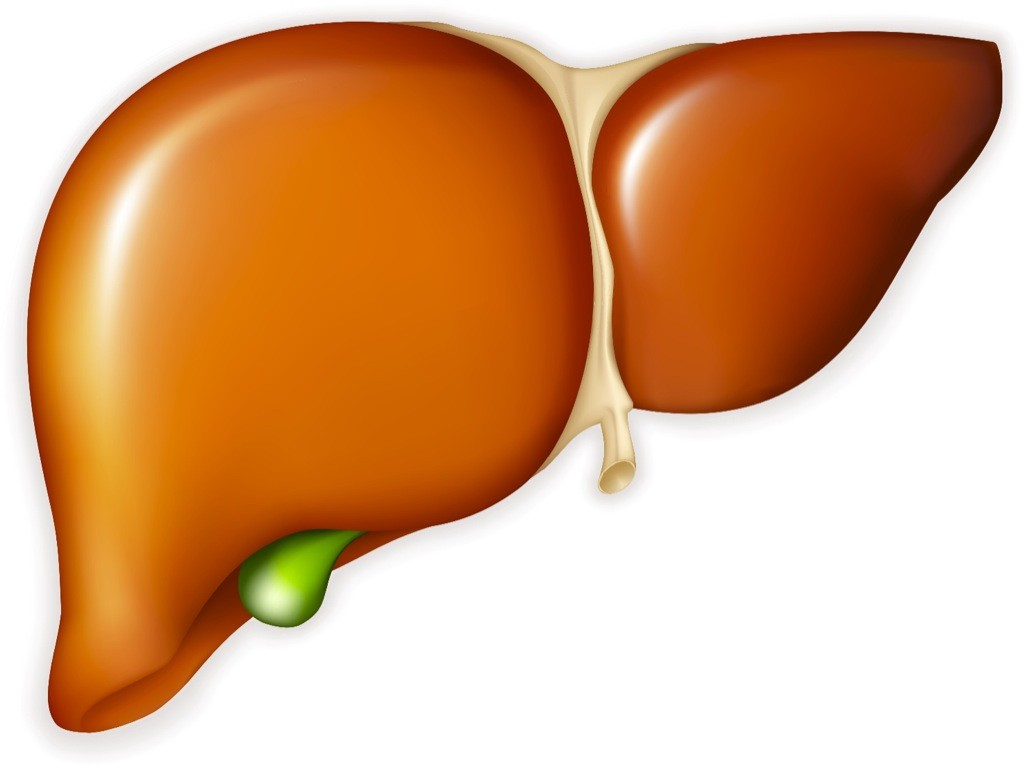 liver-cleansing-foods-theinfong.com-1024x768